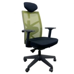 Ghế xoay văn phòng Tone-01  lưng lưới màu xanh có tựa đầu  HOGVP035